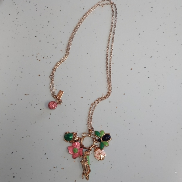 Lily pullitzer long necklace